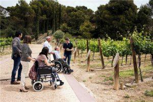 La Ruta del Vino Somontano mejora su accesibilidad.
